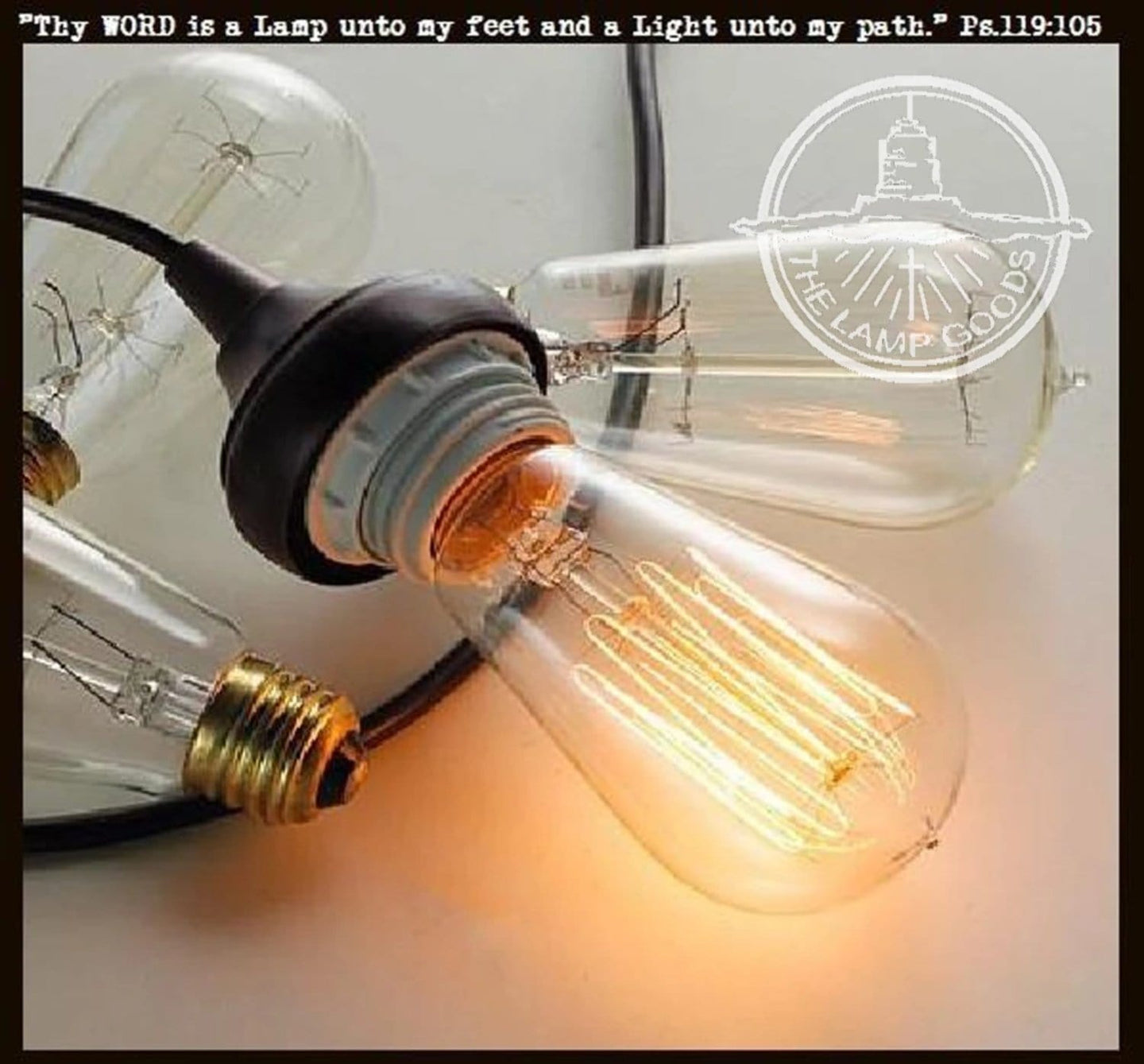 Dimmable Edison Bulb - 60 watts - Standard Base - The Lamp Goods