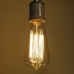 Edison Dimmable Bulb - 60 watts - Standard Base - The Lamp Goods