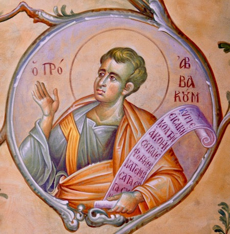 Habakkuk the Prophet icon (2)