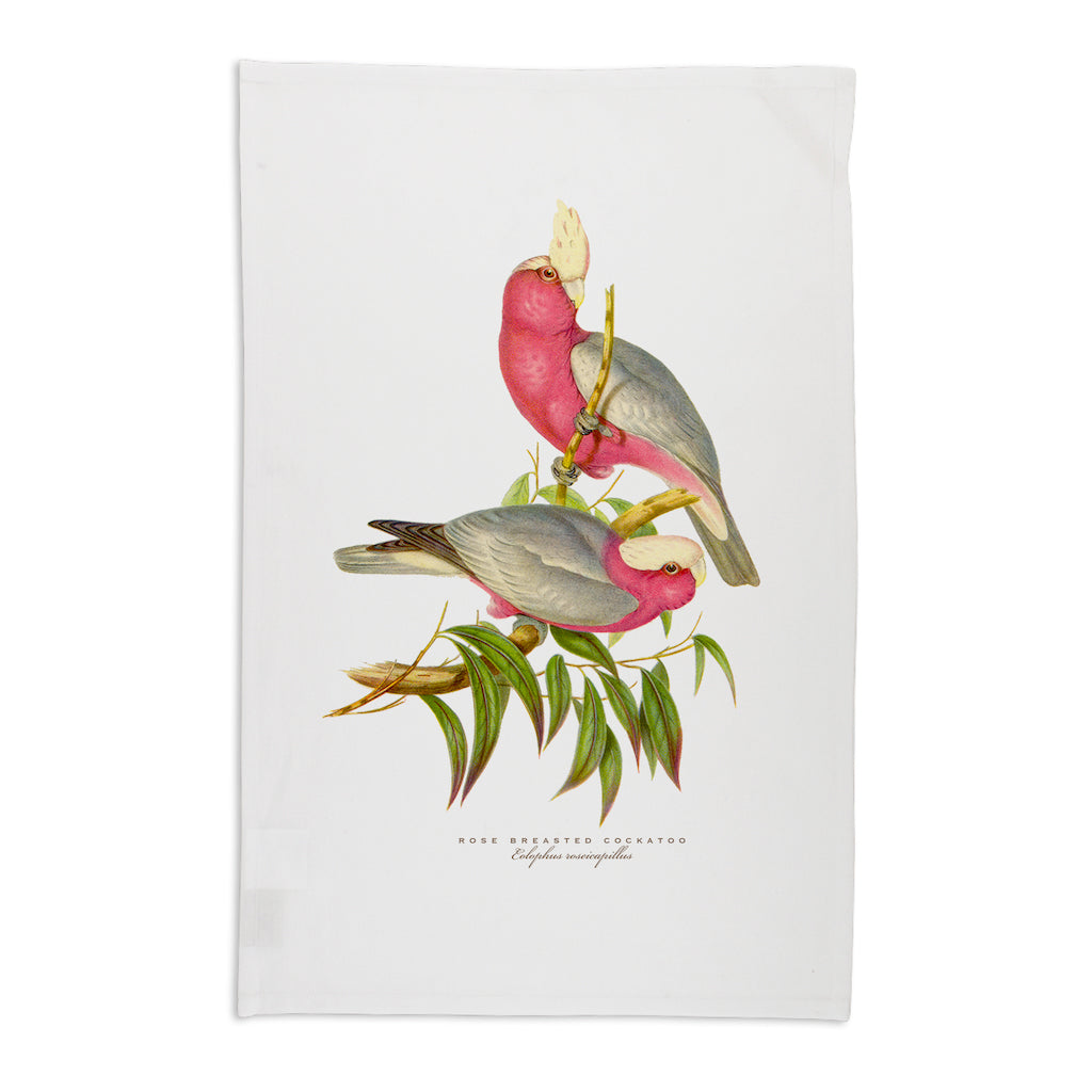 Linen Press Tea Towel White John Gould (Organic Cotton) Teros