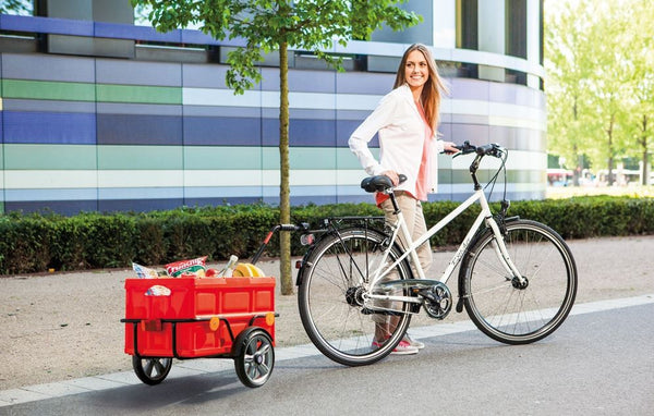 Andersen Shopper Bike Trailer
