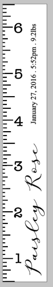 Growth Ruler - Name with birth records vertical 11.5x72