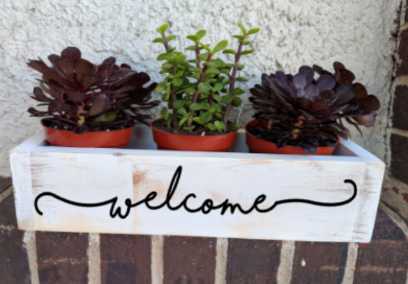 Succulent Planter Box- welcome