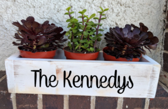 Succulent Planter Box- family name