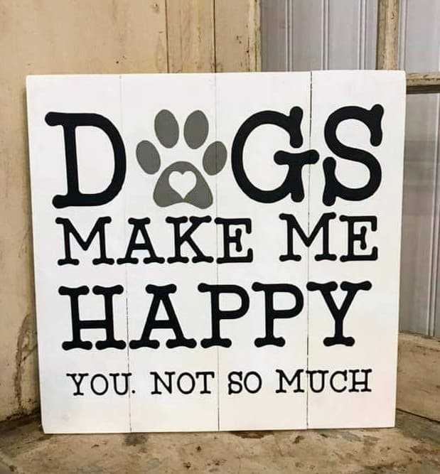 Dogs make me happy You. Not so much