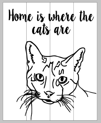 Pet Portrait - Home is where the cats are