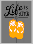 3D Life is better in flipflops