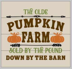 Pumpkin farm sold by the pound