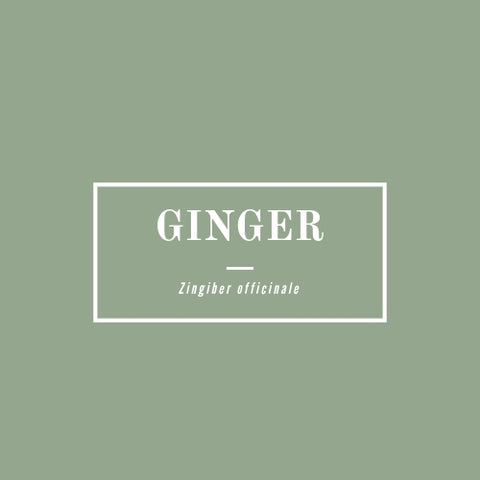 Ginger - rå goods