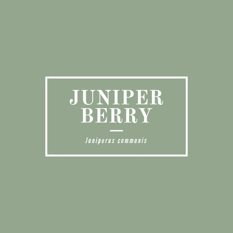Juniper Berry - rå goods