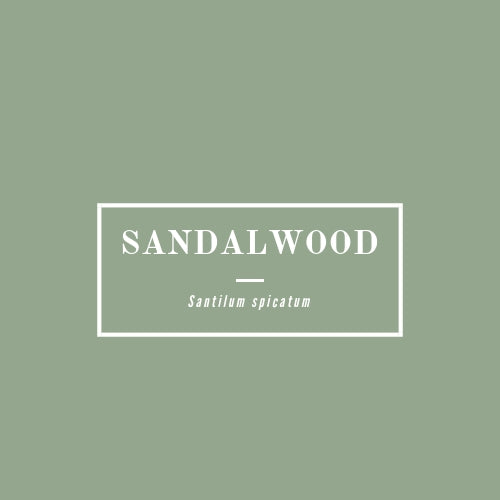 Sandalwood - rå goods