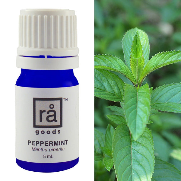 Peppermint - rå goods