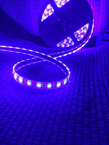 Black light strip
