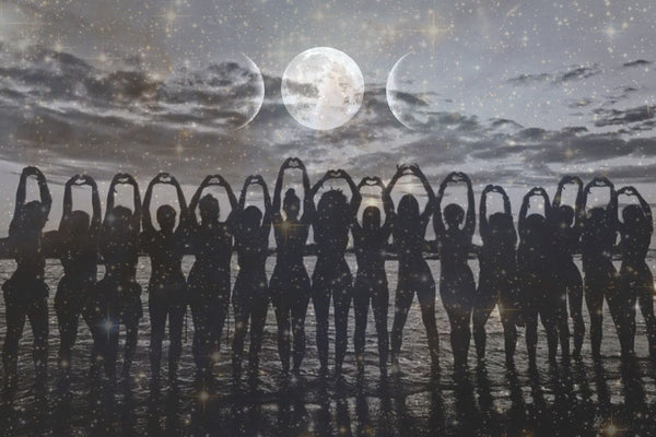 ☾ New Moon Rising ☽