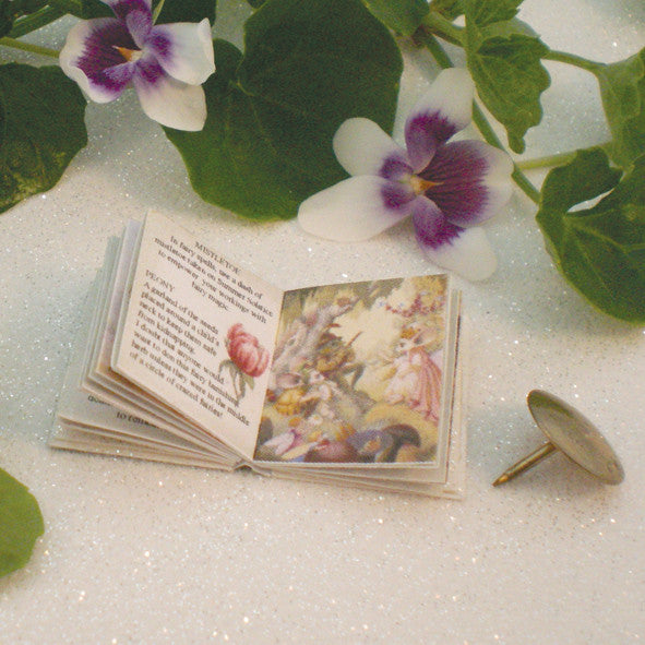 Illustrated Fairy Book