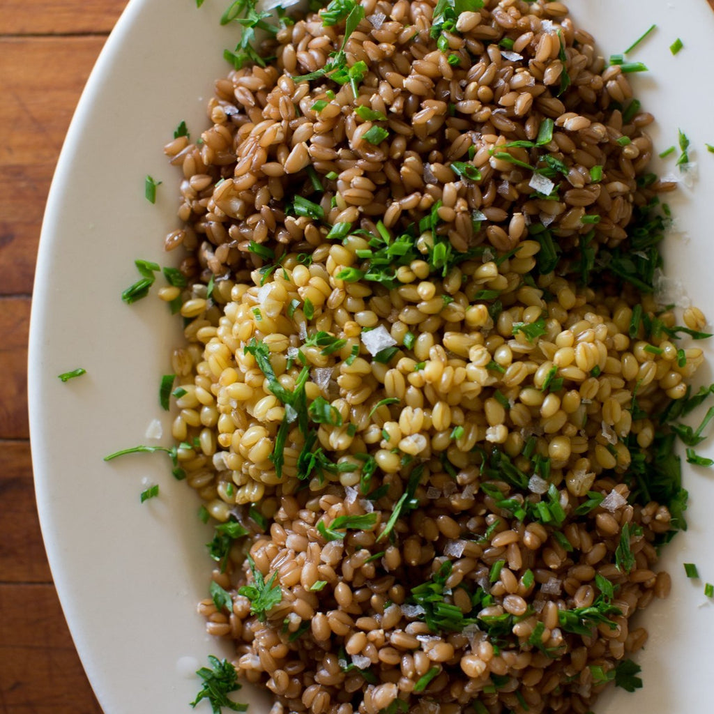Rancho Llano Seco Wheat Berries | Ancient Grains