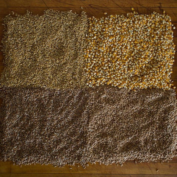 Emmer Farro - Wheat Berries