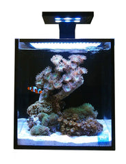 Innovative Marine 10 gallon NUVO Fusion Nano Aquarium Premium Starter Kit