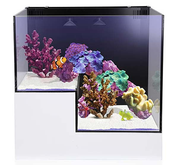Innovative Marine NUVO Concept Abyss Panorama Drop Off Aquarium - 20 Gallons FREE SHIPPING