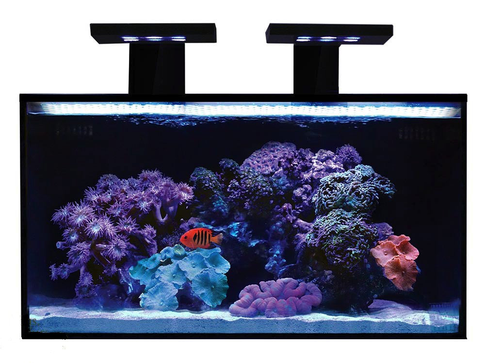 Innovative Marine 20 Gallon NUVO Fusion Nano Aquarium Premium Starter Kit