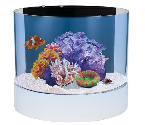 Innovative Marine NUVO Concept Atoll Cylinder Aquarium - 12 Gallons