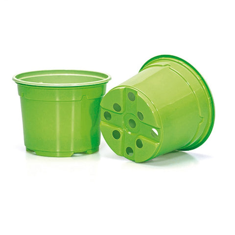 10.5cm Coloured Duo 5° Low Pot - Green (EB) by Soparco