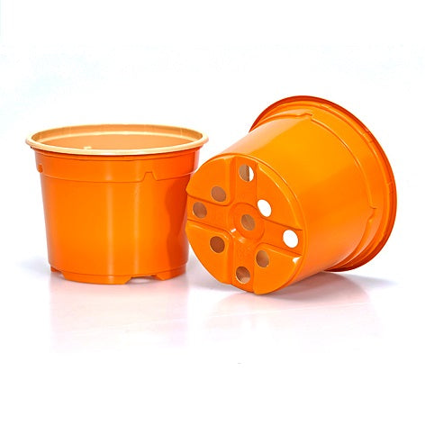 10.5cm Coloured Duo 5° Low Pot - Orange (12) by Soparco