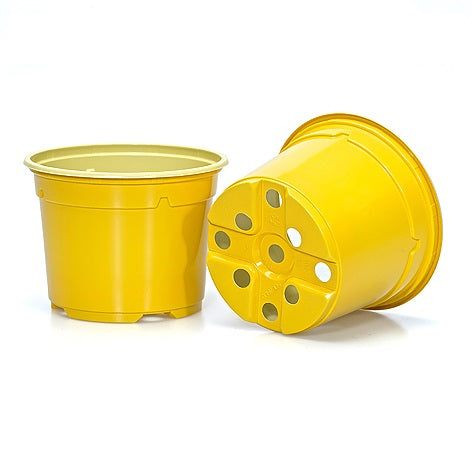 10.5cm Coloured  Duo 5° Low Pot - Yellow (23) by Soparco