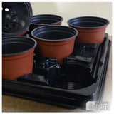 10.5cm Round plant pot carry tray - holds 12 pots