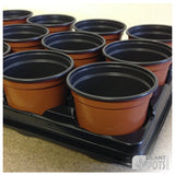 10cm Round plant pot carry tray - holds 15 pots