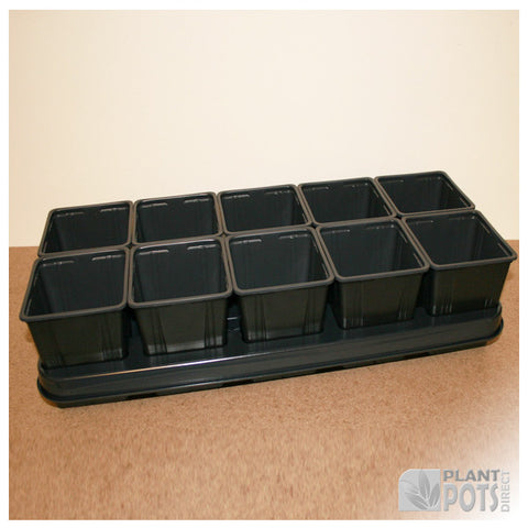 11cm Square plant pot set - 10 pots