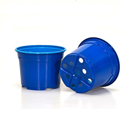 9cm Coloured Pot Duo 5° Low Pot - Blue (11) by Soparco
