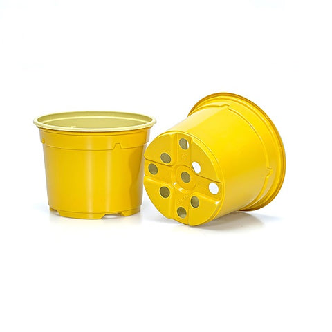 9cm Coloured  Duo 5° Low Pot - Yellow (23) by Soparco