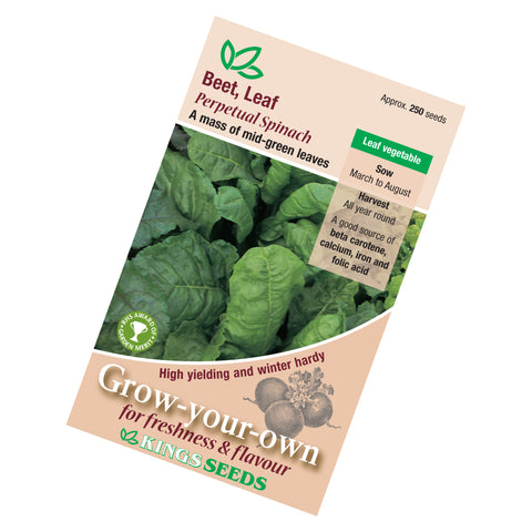 Beet Leaf Perpetual Spinach Seeds
