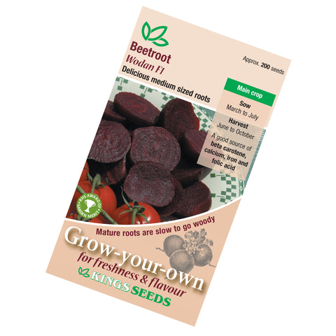 Beetroot Wodan F1 Seeds