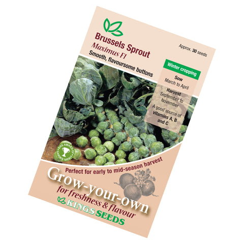 Brussels Sprout Maximus F1 Hybrid Seeds