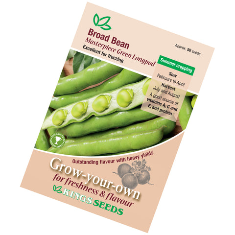 Broad Bean Masterpiece Green seeds