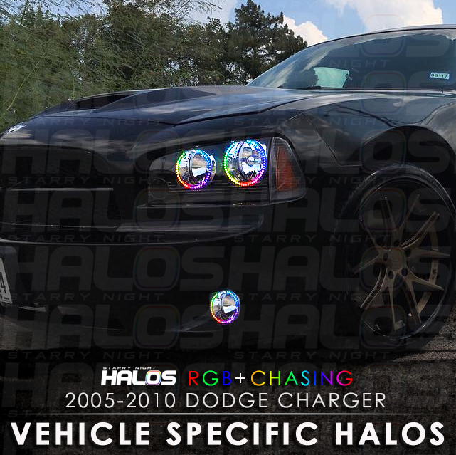 2005 2010 dodge charger rgbchasing starry night halo kit 4 halos 2005 2010 dodge charger rgbchasing starry night halo kit 4 halos starry night halos publicscrutiny Images