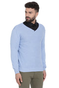 Axmann Solid V Neck Sweater