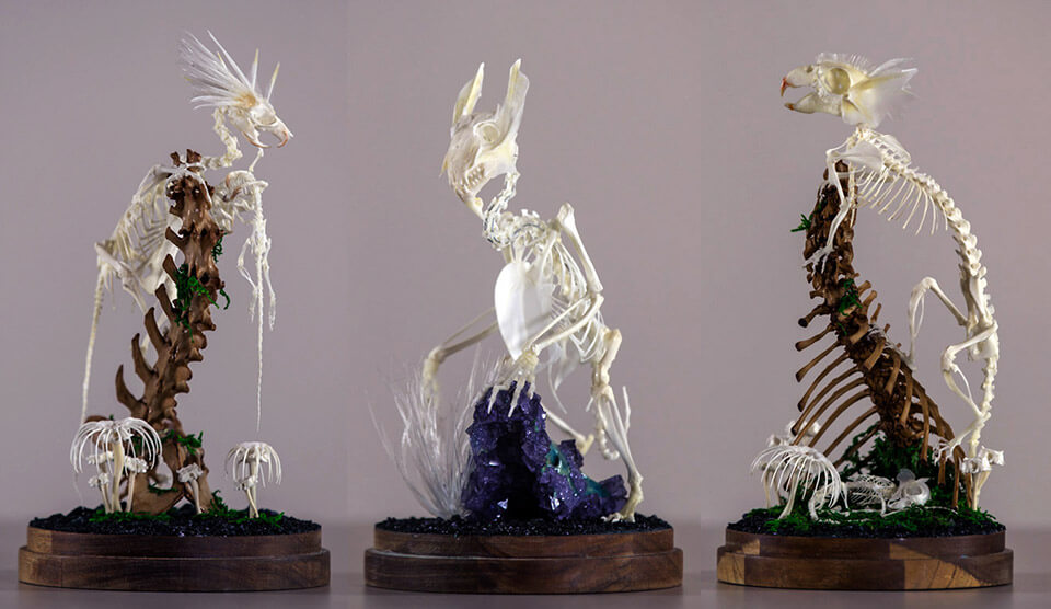 A selection of Gerard Geer's bone sculptures for Chimaephera