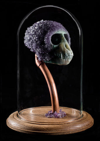 "Gerard Geer - ""Neptune's Amethyst"" - crystallised Vervet monkey skull in glass dome"
