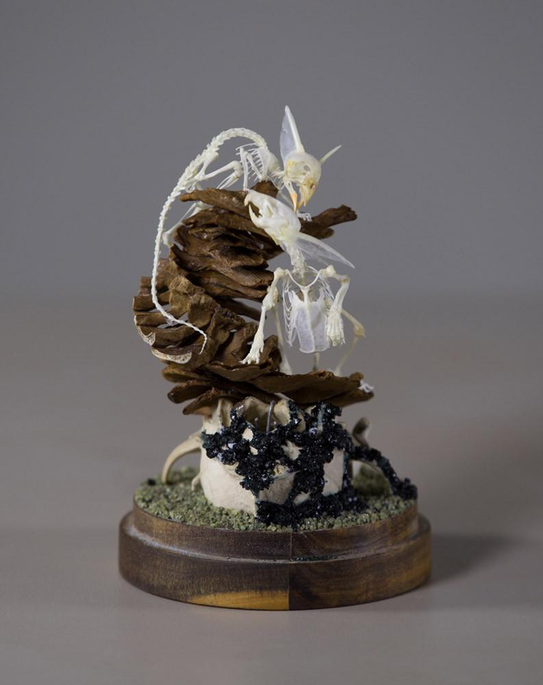"Gerard Geer - ""The Chase"" - assorted chicken, mouse, bird, rat, fox and fish bones, garnet crystal and wire on acacia base under glass dome - 10 x 20cm (3.9""x7.9"")"