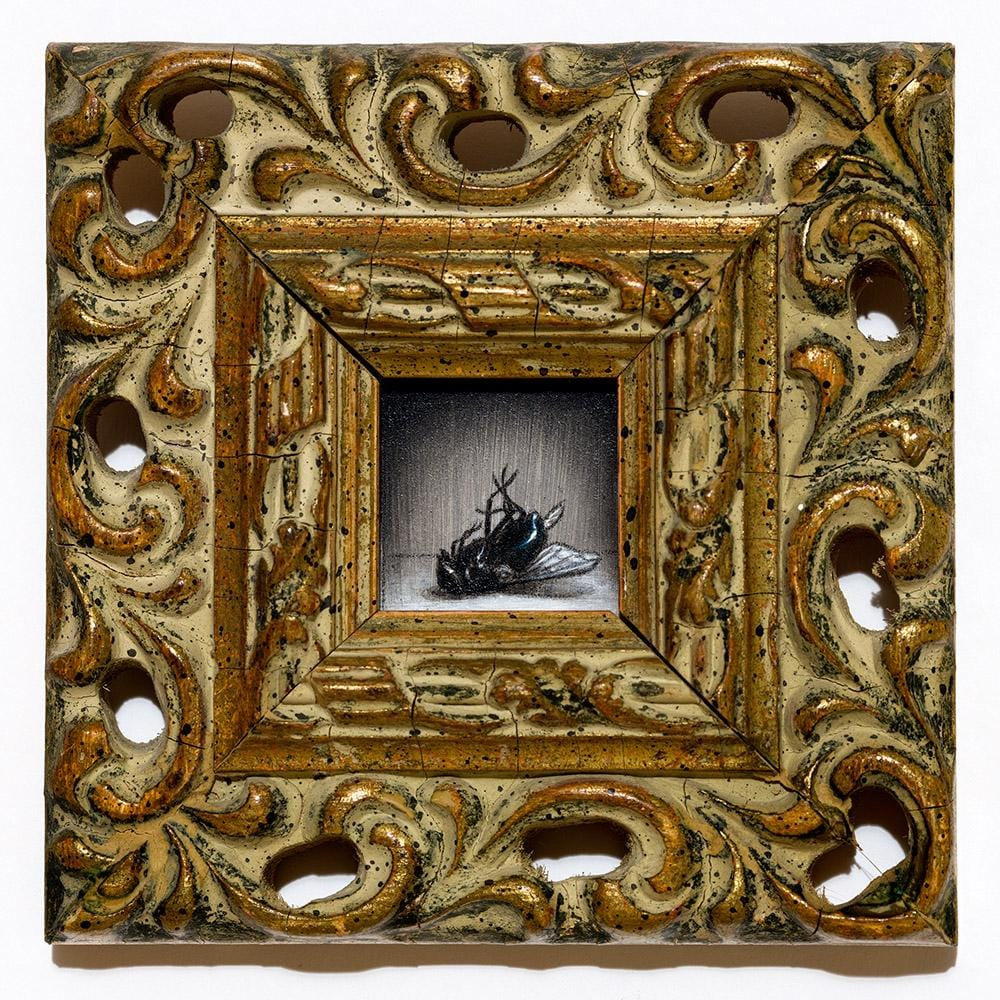 "Jean Labourdette (Turf One) - ""Dead Fly"" - acrylic and oil on panel with vintage frame - 10.8 x 10.8cm (4.25""x4.25"")"