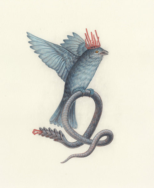 "Nick Sheehy - ""Snake Bird"" - graphite & watercolour on paper"