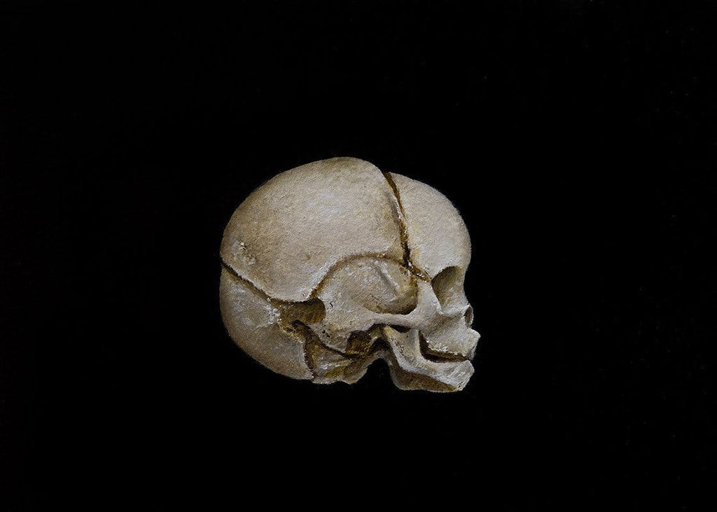 "Kit King & Oda - ""Fetal Skull Study"" - Oil on birch gallery panel. 12.7 x 17.8cm (5""x7"")"