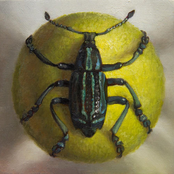 "Zane York- 'Beetle on Yellow Sphere' - oil on Plexiglass - 6.3 x 6.3cm (2.5""x2.5"")"