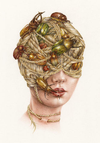 "Courtney Brims - ""Pester"" - coloured pencil on Arches smooth watercolour paper - 21 x 31 cm (8.3""x12.2"")"