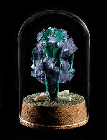 "Gerard Geer - ""Amethyst Rabbit Skull"" - crystallised rabbit skull in glass dome"