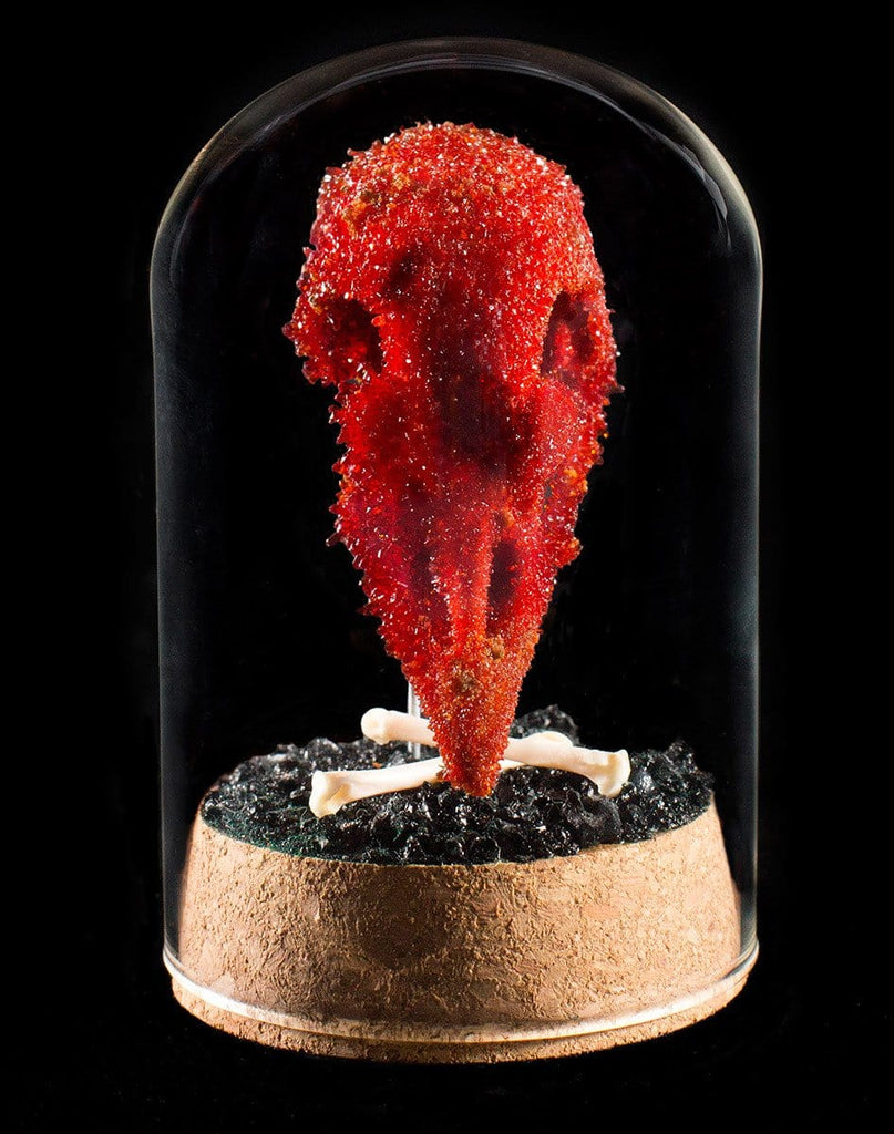 "Gerard Geer - ""Blood Rooster"" - crystallised rooster skull in glass dome"