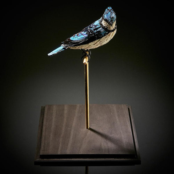 "Natalie Delaney-John - ""Pablo's Blue Jay""- 40 mixed butterflies, wire, clay and polyurethane in glass case - 17.5 x 17.5 x 31cm (6.9""x6.9""x12.2"")"